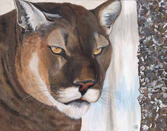 Cougar Acrylic on canvas 22 X 28 Original For Sale $800.00