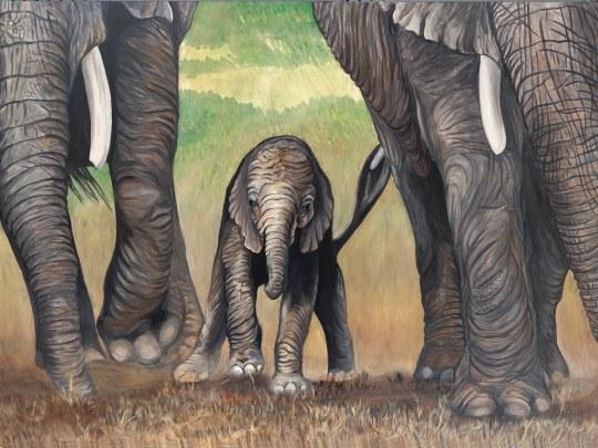 Elephant Trio 36 X 48 X 1.5 Acrylic on Canvas Original For Sale $2246.00