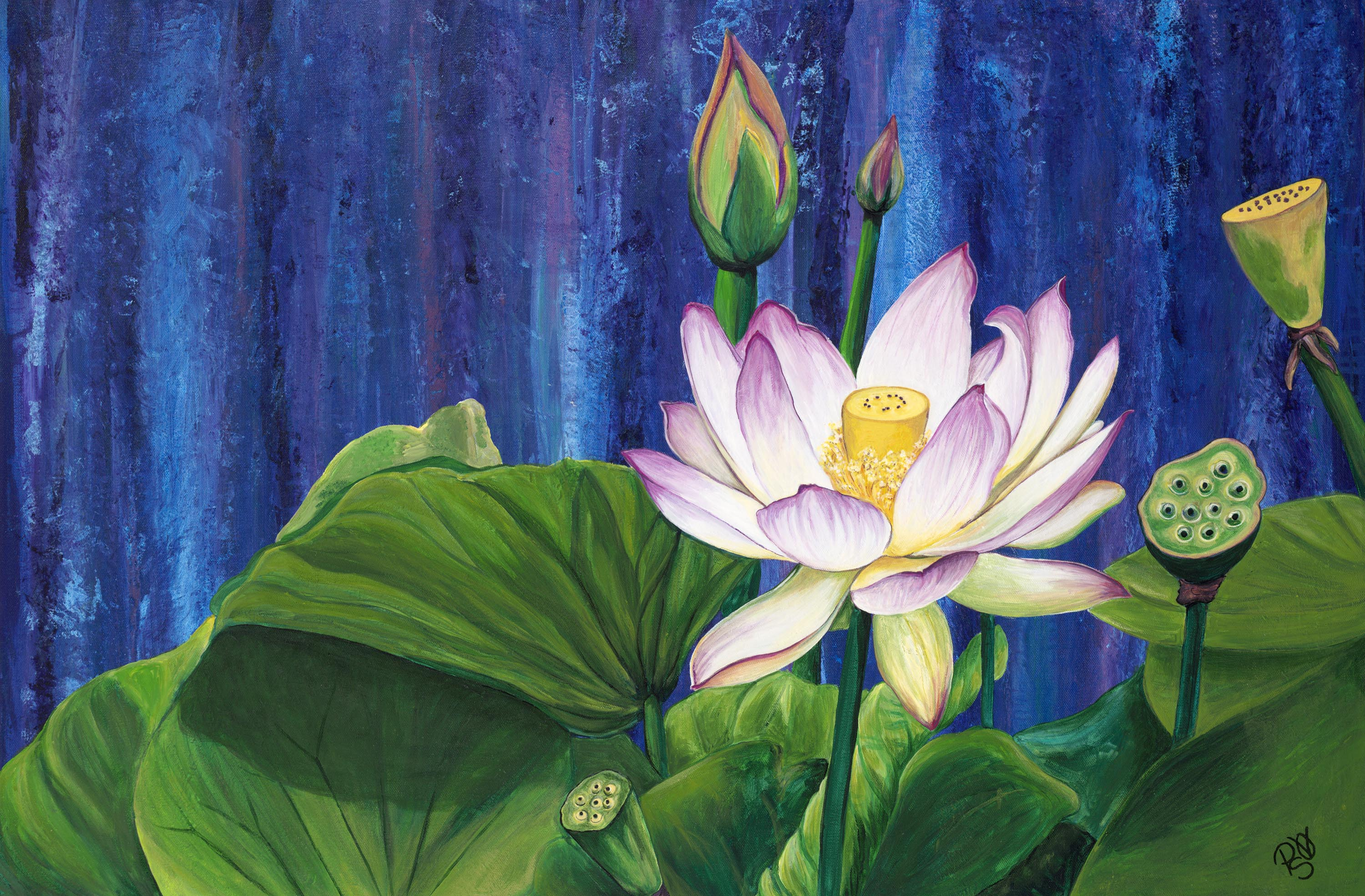 Pattys vicknairs flower paintings the art of patty sue ohair lotus dream by patty sue ohair vicknair 24 x 36 x 15 acrylic izmirmasajfo