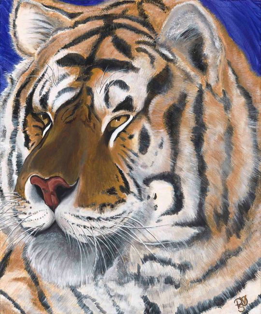 Turpinetine Creek Tiger Acrylic on canvas board 18 X 24  Original For Sale $560.00