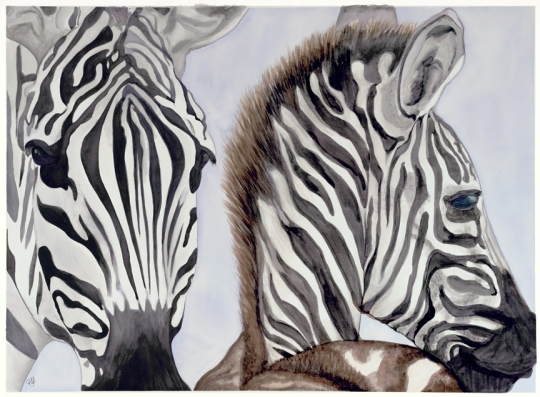 Zebra Mother and Child Watercolor on paper 22 X 30 Original For Sale $750.00