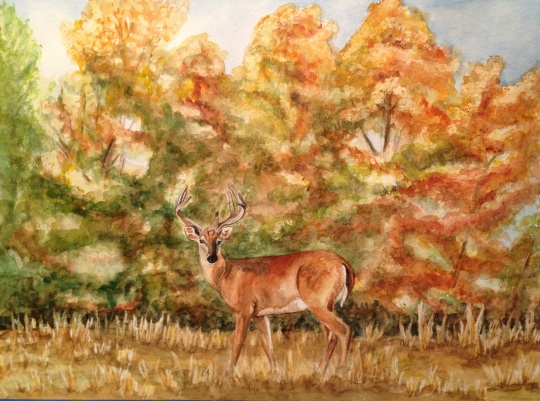 WhiteTail Deer in The Ozark Fall 18 X 24 Watercolor Canson 140 lb Watercolor Paper Original FOR SALE $350.00